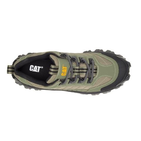 CAT Intruder Trainer - Lichen Green